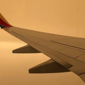 カリフォルニアの山火事の影響:飛行機に乗ってみた景色