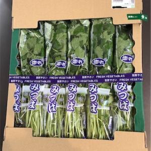 業務スーパーで安い野菜発見!