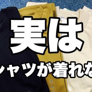 実はTシャツが着れない体質でして、この時期に買いまくるんです。