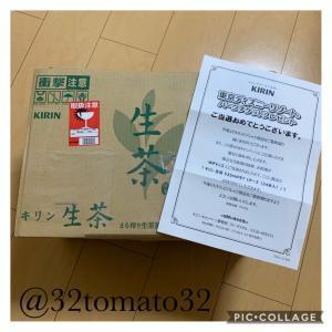 *当選品♡生茶1ケース*