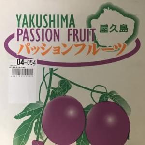 パッションフルーツ(屋久島産)