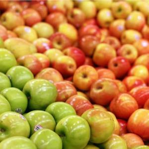 古代ローマの食材(6)ローマは果物の帝国