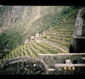 インカの食と段々畑-ヨーロッパ人到来以前の中南米の食(3)