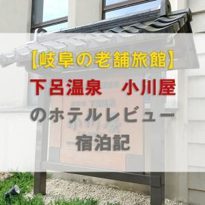 【岐阜の老舗旅館】下呂温泉 小川屋のホテルレビュー宿泊記