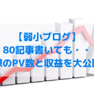 【悲報】ブログ80記事書いたけど・・衝撃のPV数と収益を大公開!