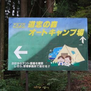 道志の森キャンプ場 NO.8