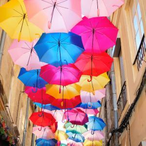 傘の花が咲く場所だから