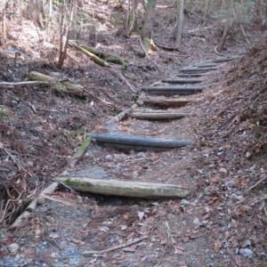 高野山一人旅 1日目③ 山上へ