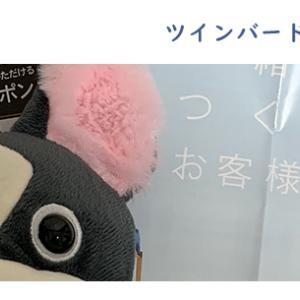 ツインバード工業株式会社【6897】の株主優待が届いた!
