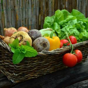 有機野菜は身体にやさしい?安心を考えてみた
