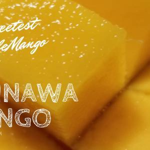 沖縄マンゴーお取り寄せした口コミを発表します!時期があるから急いでね。