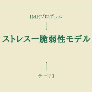 【IMRプログラム】テーマ3「ストレスー脆弱性モデル」