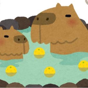 日の長い時期、休日の明るいうち入る風呂は最高です!