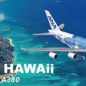 ハワイ旅行が幻になりそうで、涙がちょちょぎれそうです!