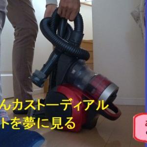東京ディズニーリゾートで、カストーディアルキャストを極めて、人気お掃除ジジイになりたいと本気で思ったある日
