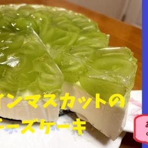♪シャインマスカットのレアチーズケーキ♪