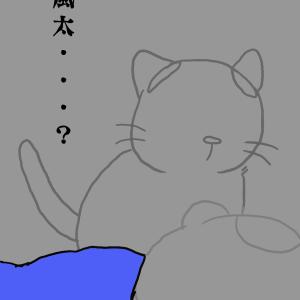 止める猫たち*前編
