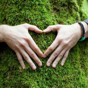 私たちには、生まれつき健全さに向かおうとする自然本来の働きが備わっています。