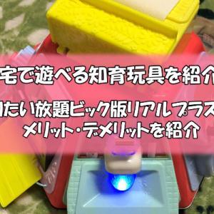自宅で遊べる知育玩具「やりたい放題ビック版リアルプラス」の紹介