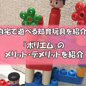 自宅で遊べる知育玩具PoyaM(ポリエム)のメリットデメリット
