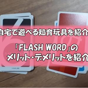 自宅で遊べる知育玩具「FLASH WORD」のメリットデメリット