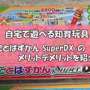 自宅で遊べる「こどもずかんSuper DX」のメリットデメリット