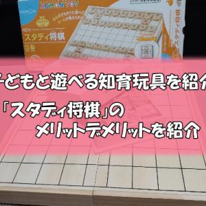 自宅で遊べる知育玩具「スタディ将棋」のメリットデメリットを紹介