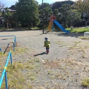 公園 > 動物園  〜自由に遊びを選べるのが1番!〜