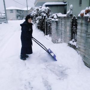 雪かきで隣人とトラブル?!実例やトラブルの対策を学んでおきたい!