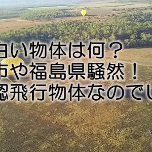謎の白い物体は何?仙台市や福島県騒然!未確認飛行物体なのでUFO