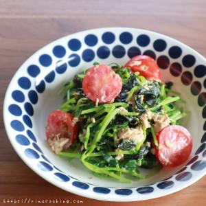 【レシピ】豆苗とシーチキンのサラダ