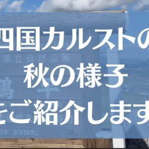 【寒い?】四国の絶景スポット四国カルストへ秋のハイキングへ行ってきました