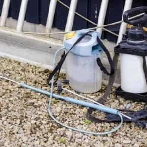 子供やペットにも安全な人気除草剤おすすめランキングTOP5