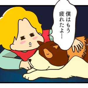夫のうる覚え「フランダースの犬」