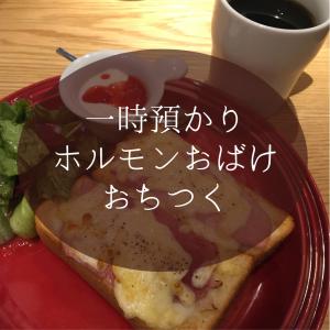 ホルモンおばけおちつく【一時預かり】