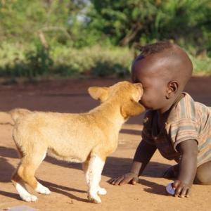 愛犬の健康って考えていますか