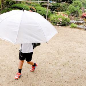 湿度対策 おすすめ商品