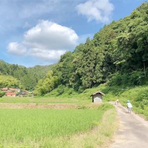 田舎のほっこり散歩 part2