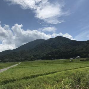 野坂岳/関西百名山〔ルート〕 野坂山いこいの森登山口ピストン|関西登山記