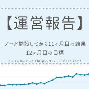 【1万PV達成!】雑記ブログを開設してから11ヶ月目の運営報告【WordPress】