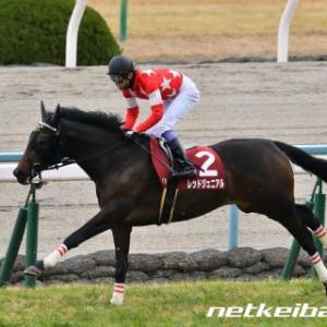 2020年5月9日(土)京都新聞杯(GⅡ)予想のための過去10年のレース結果分析
