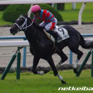2020年5月9日(土)京都新聞杯(GⅡ)レース回顧