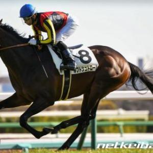 2020年5月10日(日)NHKマイルカップ(GⅠ)ワイド軸馬予想