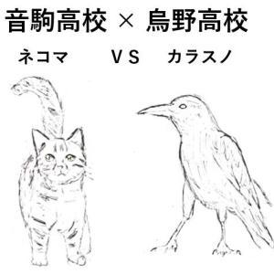 音駒(ネコ)VS 烏野(カラス):ゴミ捨て場の決戦(ハイキュー!!)