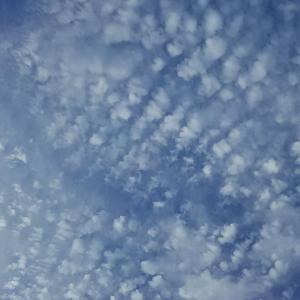 ふと空を見上げてみたら雲がきれいだった