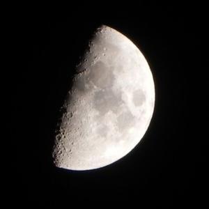 「半月」上弦の月が綺麗ですね(Nicon COOLPIX P100)