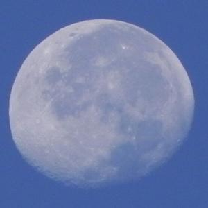 「昼間の月」どうして昼でも月が見えるのかな(Nicon:COOLPIX P100)