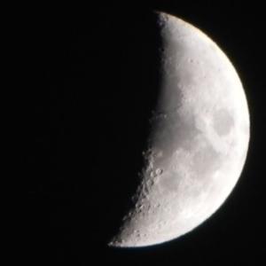 夕月、黄昏月、宵月のどれでも良いかな(NiconのCOOLPIX P100)
