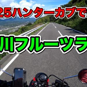 紀ノ川フルーツラインを疾走る…