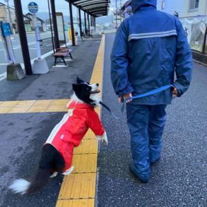 またまた、雨の日の楽しみかた〜♪